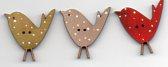 Birdys x 3 with spots